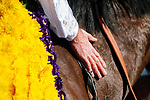 November 7, 2020 : Glass Slippers, ridden by Tom Eaves, wins the Turf Sprint on Breeders' Cup Championship Saturday at Keeneland Race Course in Lexington, Kentucky on November 7, 2020. Carolyn Simancik/Breeders' Cup/Eclipse Sportswire/CSM