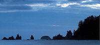 Sea stacks off Mora Beach, Olympic National Park, Olympic Peninsula, Clallam County, Washington, USA