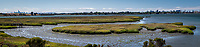The Arrowhead Marsh along San Leandro Bay viewed from the raised observation platform at Martin Luther King Jr. Regional Shoreline.  On the horizon to the left is the San Francisco skyline and the Oakland skyline is on the right in a multi-image panoramic.