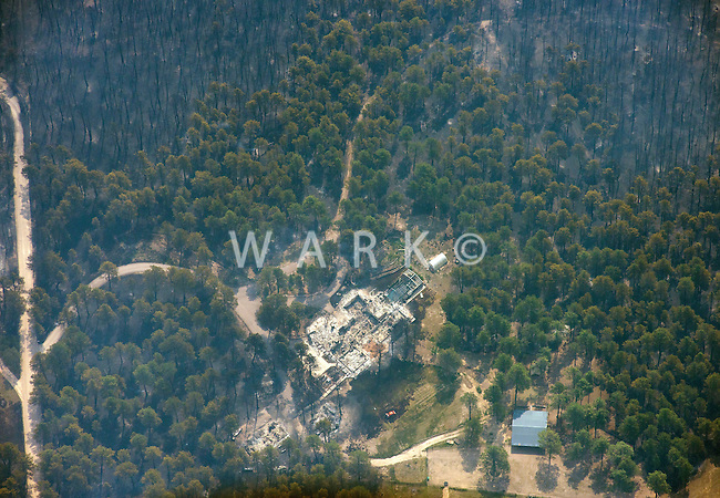 Black Forest wild fire