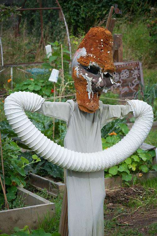 Homemade scarecrow on an allotment plot.