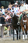 June 5 2010. Court Vision in the Woodford Reserve Manhattan Handicap at Belmont Park in Elmont, NY...