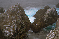 Point Lobos Seashore 3
