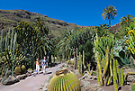 Spain, Gran Canaria, Maspalomas: Palmitos Park - cactus garden | Spanien, Gran Canaria, Maspalomas: Palmitos Park