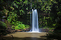 Ginseng Falls, a waterfall on a tributary of the Maliau River, centre of Maliau Basin - Sabah's 'Lost World', Borneo.