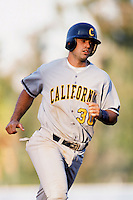 Mike Tonis of the Cal Bears during a NCAA baseball game against the UCLA Bruins at UCLA circa 1999 in Los Angeles, California. (Larry Goren/Four Seam Images)