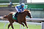 Amarga with Julien Leparoux wins the 3rd race at Keeneland Race Course. 04.08.2010
