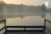 Wooden pontoon and hazy pond at sunrise (Licence this image exclusively with Getty: http://www.gettyimages.com/detail/73013986 )