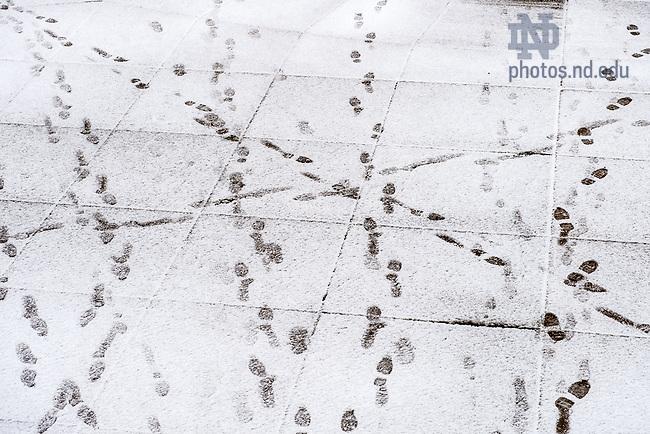 Feb. 24, 2016; Footprints in fresh snow. (Photo by Matt Cashore/University of Notre Dame)