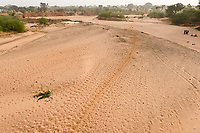 NIGER, Niamey, dry river bed / trockener Zufluß zum Niger Fluß