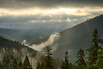 Idaho, North, Kootenai County, Kaniksu National Forest. Fog and sun rays over the autumn colors of the Kaniksu District of the Idaho Panhandle National forest.