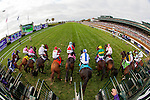 October 30, 2015 : The field leaves the starting gate during the Breeders' Cup Juvenile Fillies Turf (Grade I) at Keeneland Race Course in Lexington, Kentucky October 30, 2015.  Jon Durr/ESW/CSM