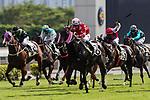 Jockeys riding their horses during Hong Kong Racing at Sha Tin Racecourse on on October 13, 2018 in Hong Kong, Hong Kong. Photo by Yu Chun Christopher Wong / Power Sport Images
