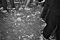 Feathers and torn pillows litter the ground during a pillow fight for 2011 International Pillow Fight Day in Cambridge Common in Cambridge, Massachusetts, USA.  The event was organized by Banditos Misterios, a Boston-area group that anonymously organizes free, public events in the city.