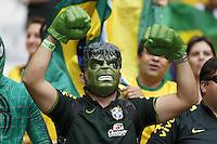 Brazil fans with a Hulk costume