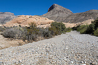 Red Rock Canyon, Nevada.  Trail to Calico Tanks goes up a Wash.  Turtlehead Peak in background.