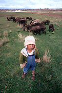 In Bolivia, children are employed as shepherds on the Altiplano plateau. - Child labor as seen around the world between 1979 and 1980 - Photographer Jean Pierre Laffont, touched by the suffering of child workers, chronicled their plight in 12 countries over the course of one year.  Laffont was awarded The World Press Award and Madeline Ross Award among many others for his work.