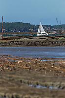 France, Gironde (33),Bassin d'Arcachon, l' île aux oiseaux  Parc à huîtres //  France, Gironde, Bassin d'Arcachon, l' île aux oiseaux ( birds Island)  -  Bed Oysters
