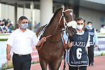 March 27, 2021: MOTAFAAWIT (IRE) #6 in the post parade for the Al Quoz sprint on Dubai World Cup Day, Meydan Racecourse, Dubai, UAE. Shamela Hanley/Eclipse Sportswire/CSM