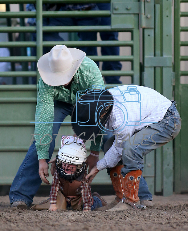Weston Starr, 2, of Fallon, competes in the mutton bustin' event at the Smackdown Tour at Fuji Park in Carson City, Nev., on Saturday, June 7, 2014.<br /> Photo by Cathleen Allison