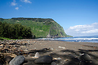 Visitors enjoy the black sand beach at Waipi'o Valley, Hamakua District, Island of Hawai'i.