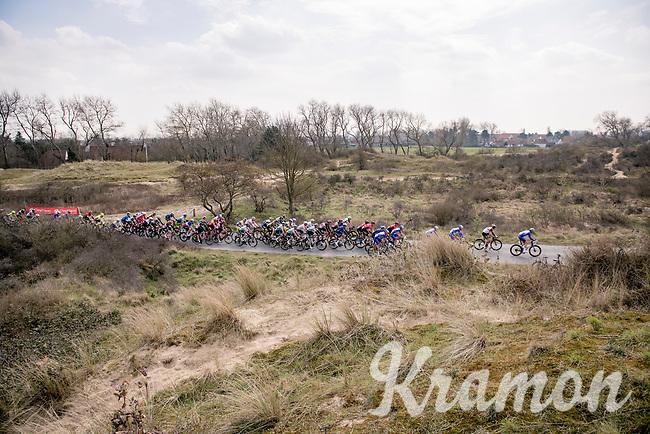 peloton rolling through the dunes<br /> <br /> 45th Oxyclean Classic Brugge-De Panne 2021 (ME/1.UWT)<br /> 1 day race from Bruges to De Panne (204km)<br /> <br /> ©kramon