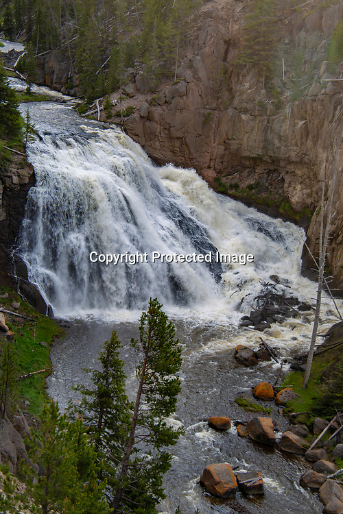 Gibbon Falls is a popular tourist stop in Yellowstone.