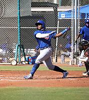 Nelson Velazquez - 2020 AIL Cubs (Bill Mitchell)