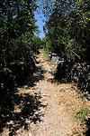 Wanderweg rund um Omisal; Hiking-path around Omisalj. Krk Island, Dalmatia, Croatia. Insel Krk, Dalmatien, Kroatien. Krk is a Croatian island in the northern Adriatic Sea, located near Rijeka in the Bay of Kvarner and part of the Primorje-Gorski Kotar county. Krk ist mit 405,22 qkm nach Cres die zweitgroesste Insel in der Adria. Sie gehoert zu Kroatien und liegt in der Kvarner-Bucht suedoestlich von Rijeka.