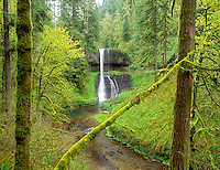 Middle North Falls in spring. Silver Falls State Park, Oregon