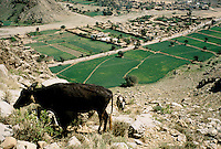 Darra town in Pakistan clandestinely provides arms to more than eight Central Asian countries.
