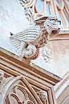 Europe, Spain, Catalonia, Tarragona, Tarragona Cathedral, Gargoyle