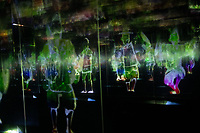 Team Lab's Borderless digital museum in Tokyo, Japan, July, 2019. The digital museum is one of Tokyo's most popular attractions and uses innovative digital audio-visual displays.