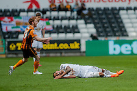 SWANSEA, WALES - APRIL 04: during the Premier League match between Swansea City and Hull City at Liberty Stadium on April 04, 2015 in Swansea, Wales.  (photo by Athena Pictures)