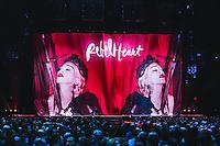 20151209 Madonna in concerto
