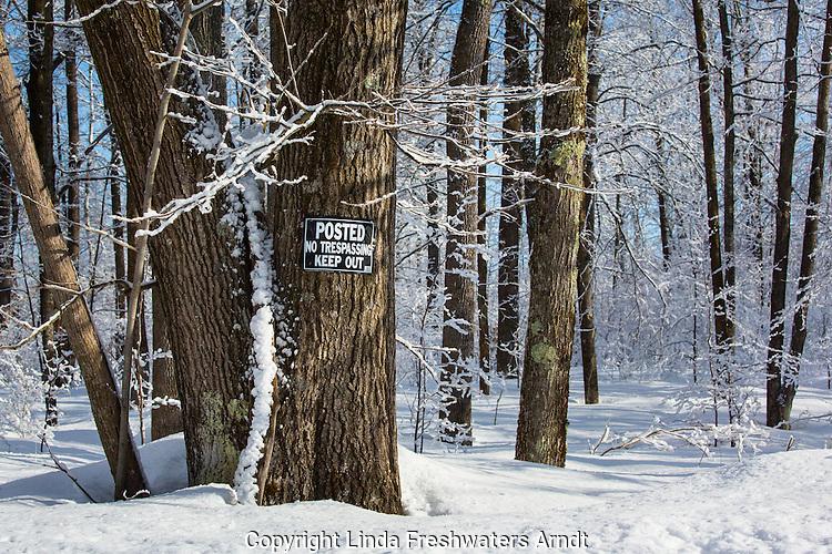No trespassing sign on tree