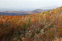Fall colors blanket the trees over the blue ridge mountains in Nelson County, Va. Photo/Andrew Shurtleff