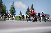 Adam Hansen (AUS/Lotto-Soudal) & co. descending the Passo Monte Croce Comelico / Kreuzbergpass (1636m)<br /> <br /> Stage 19: San Candido/Innichen › Piancavallo (191km)<br /> 100th Giro d'Italia 2017