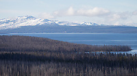 A large swath of burned trees from a 2009 wildfire borders Yellowstone Lake.