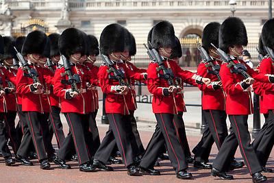 United Kingdom, London: Trooping the Colour, Scots Guards marching past Buckingham Palace   Grossbritannien, England, London: Trooping the Colour, alljaehrliche Militaerparade am zweiten Samstag im Juni zu Ehren des Geburtstages der britischen Koenige und Königinnen, schottische Garde marschiert vor dem Buckingham Palast
