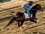 May 13, 2021: Midnight Bourbon exercises for the Preakness Stakes at Pimlico Race Course in Baltimore, Maryland. Scott Serio/Eclipse Sportswire/CSM