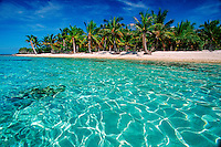 The tropical Pacific is known for its scenic landscapes of palm trees and white sand beaches, Indo-Pacific
