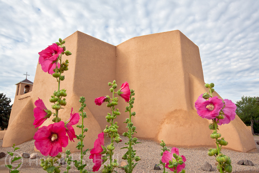 Holyhocks are in full bloom at the San Francisco de Asis church in Ranchos de Taos in New Mexico.