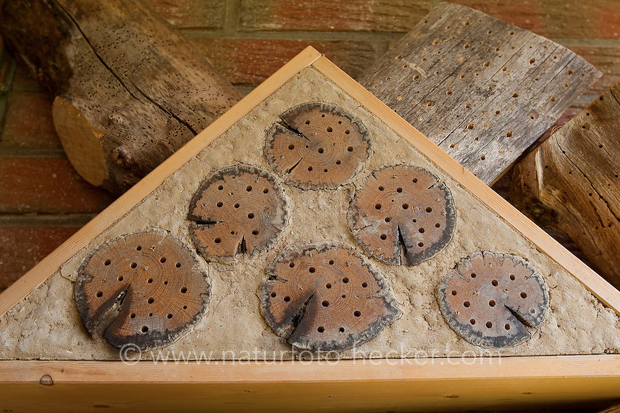 Insekten-Hotel, Insektenhotel, Baumscheiben mit Bohrlöchern sowie Lehm bieten Nistmöglichkeiten für solitäre Wildbienen und Wespen, Nisthilfe für Hymenopteren