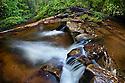River flowing through rainforest, Maliau Basin, Sabah, Borneo, Malaysia.