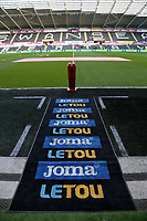 The new Letou mat during the Premier League match between Swansea City and Brighton and Hove Albion at The Liberty Stadium, Swansea, Wales, UK. Saturday 04 November 2017