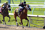 March 28, 2015:i I'm a Chatterbox with Florent Geroux up wins the Fairground Oaks / Louisiana Derby Day at the New Orleans Fairgrounds. Steve Dalmado/ESW/CSM