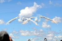 """RIONEGRO -  COLOMBIA - 09-07-2015: Con Estados Unidos como país invitado, la VII edición de F-AIR COLOMBIA, en el Aeropuerto Internacional José María Córdova de Rionegro. Más de 17 delegaciones nacionales e internacionales, 229 expositores de 20 países de América, Asia y Europa y 54.000 visitantes se reunirán durante cuatro en torno a una de las más importantes plataformas del negocio de la aviación. La feria aeronáutica es la oportunidad para mostrar al mundo el potencial aeronáutico de Colombia y seguir siendo líderes regionales en el desarrollo de las operaciones aéreas. Más de 25 tipos de aeronaves con las tecnologías más avanzadas de la industria para uso comercial y militar, serán exhibidas durante el certamen ferial. La Aeronáutica Civil y la Fuerza Aérea Colombiana presentarán, por su parte, los últimos avances que en materia de infraestructura aeronáutica y aeroespacial se vienen desarrollando en el país. Los asistentes disfrutaran de 26 revistas aéreas realizadas por las mejores escuadrillas de Colombia, Chile y Estados Unidos. Se destaca el equipo acrobático de los helicópteros AH-60 """"Arpía"""", una de las mayores atracciones de la Fuerza Aérea Colombiana (FAC), una coreografía aérea de alto impacto, considerada como """"irrepetible"""" en el resto del mundo, a cargo de la Escuadrilla de Alta Acrobacia """"Los Halcones"""" de Chile y el show aéreo que presentarán las aeronaves B-52 de la Fuerza Aérea de Estados Unidos. /  With the United States as guest, the seventh edition of F-AIR COLOMBIA, at the Jose Maria Cordova of Rionegro International Airport. More than 17 national and international delegations, 229 exhibitors from 20 countries in America, Asia and Europe and 54,000 visitors will meet for four around one of the most important platforms in the aviation business. The air show is the opportunity to show the world the potential aeronautical Colombia and remain regional leaders in the development of air operations. More"""