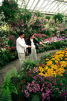 Melbourne, Australia, Fitzroy Gardens and Conservatory with flowers and tourists