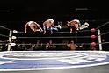 Pro Wrestling: Fukumen Mania 42